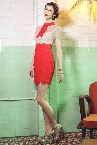Chiara lace collared dress in Mandarin